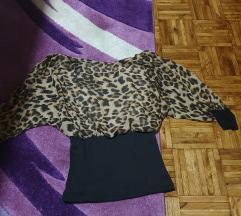 Tigrasta bluzica