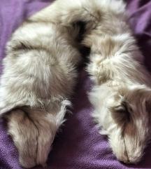 krzno kragna  bele polarne lisice
