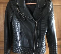 Kozna nova jaknica
