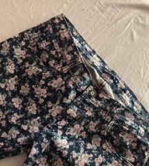 Terranova cvetne pantalone