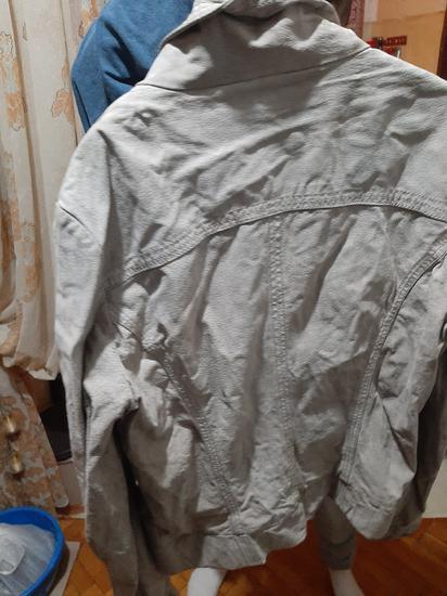 Kozna jaknica