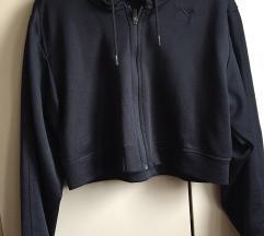 Puma jaknica
