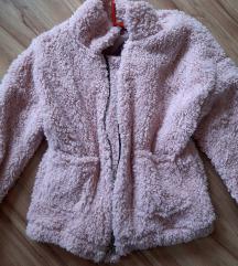 Tedy jaknica
