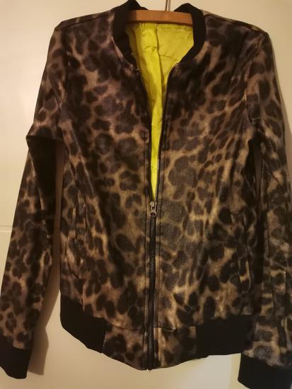Nova PWL jaknica