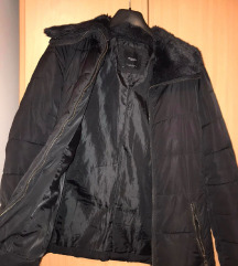 Zimska i jesenja jaknica