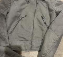 Crop jaknica siva