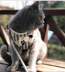 Povodac za mačiće! S veličina NOVO