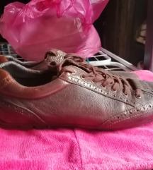 Cipela Patika 42