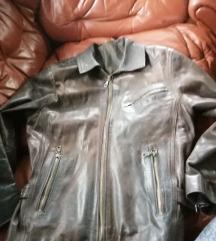 Unisex jakna od teleće box kože