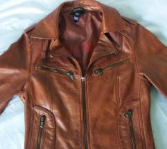 Britanska kozna jakna Aviatrix novo