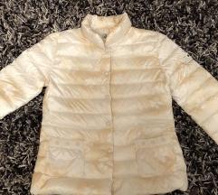 Perjana jaknica