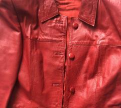 Crvena jakna RASPRODAJA 900