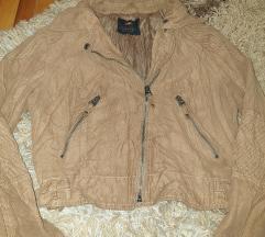 Kraca braon jaknica