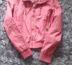 Prelepa berska jaknica 700