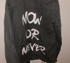 *NOVO* Maslinasta jaknica SNIZENO
