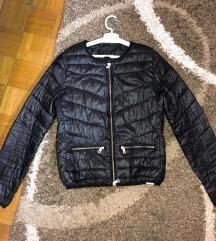 Crna jaknica Amisu