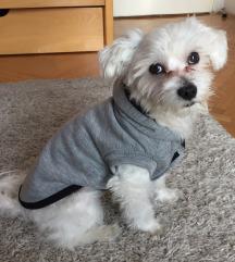Duks za pse 🐾 NOVO
