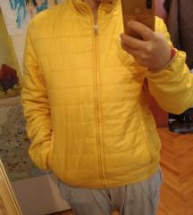 Lenasso tanja jesenja jaknica L