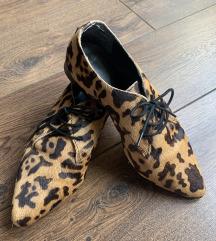 Leopard cipelice SNIZENO