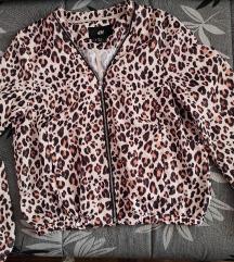 Nova H&M jaknica