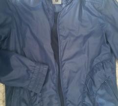 Teget jaknica suskavac