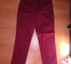 Coton pantalone