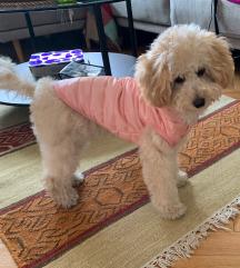 Štepana jakna za psa