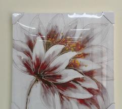 Nova slika cvet