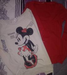 Teranova Disney