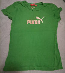 Puma majca