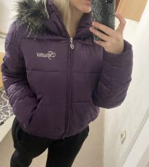 Iguana debela zimska jakna