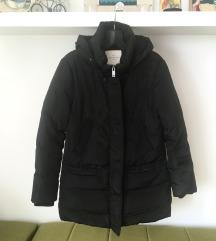Springfield zimska jakna - SNIŽENJE