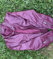 Bordo jaknica