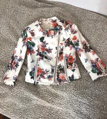 Amisu jaknica SNIŽENJE
