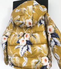 Mango jaknica 6-7 god