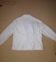 Bela teksas jaknica, nova