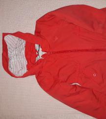 C@A prolecna  jaknica