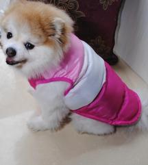 Roze prsluk 💕🐩