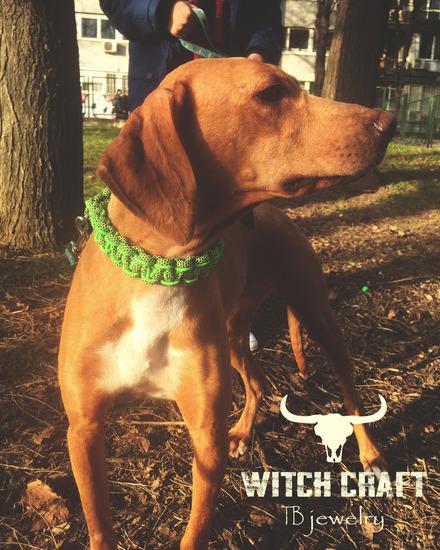 Neon green predivna ogrlica za pse