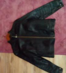 Calvin Klein Jeans kozna jakna