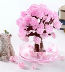 Magicno drvo