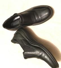 ECCO cipele pr.koza
