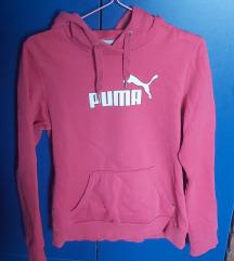 Puma rozi duks