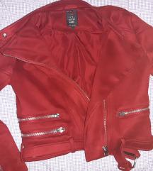 Zara jaknica