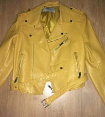 Žuta Zara jaknica