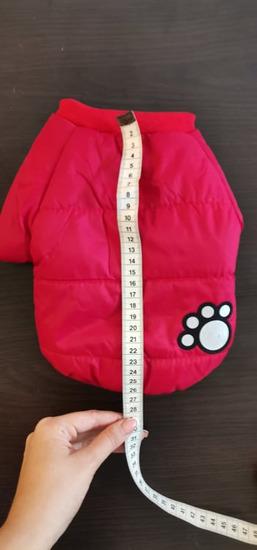 Postavljena jakna za pse
