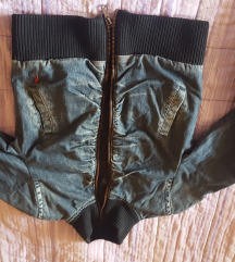 Teranova jaknica