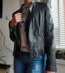 Zenska kozna jakna M-L